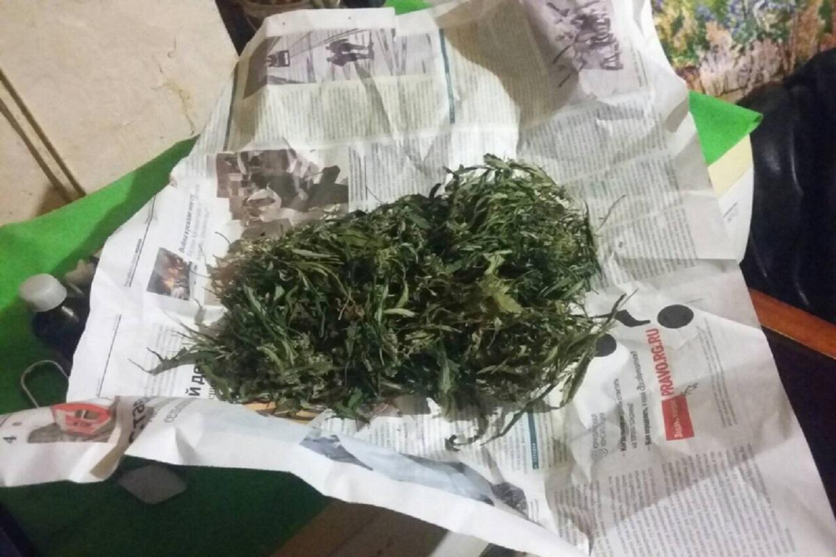 Марихуаны условный срок за хранение конопли семена курить ли